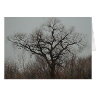 The Tree Card