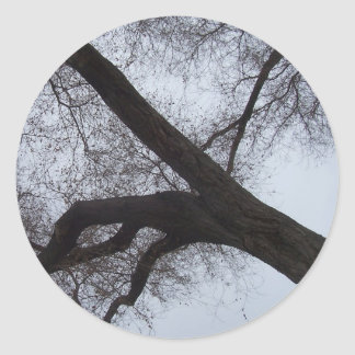 The Tree Classic Round Sticker