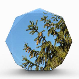 The Tree for Christmas Award