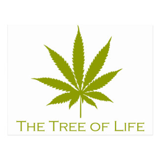 The Tree of Life (Cannabis) Postcard