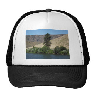 The Tree on the Other Side Hat