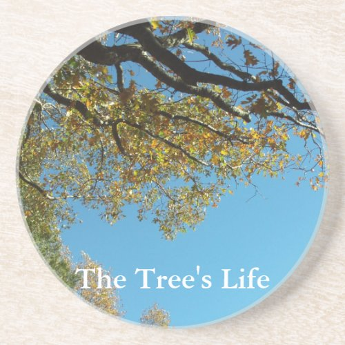 The Tree's Life coaster