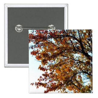 The Trees of Autumn Pin