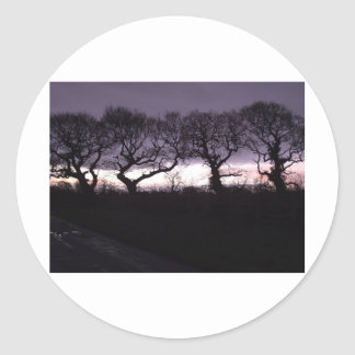 The Trees of the Honoured Dance Classic Round Sticker