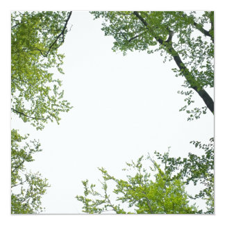 The Treetops Card