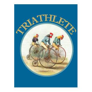 The Triathlon of Chickens Postcard