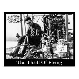The Trill Of Flying - Postcard