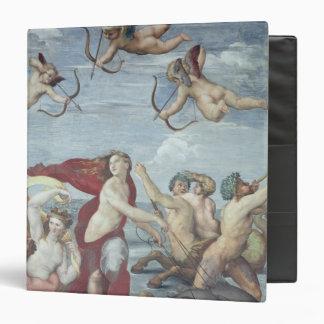The Triumph of Galatea, 1512-14 Binder