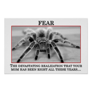 The True Meaning of Fear (S) Poster