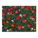 The Tulip Garden Postcard