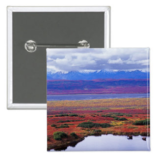 The tundra of Denali National Park in the late 2 Inch Square Button