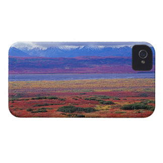 The tundra of Denali National Park in the late iPhone 4 Case-Mate Cases