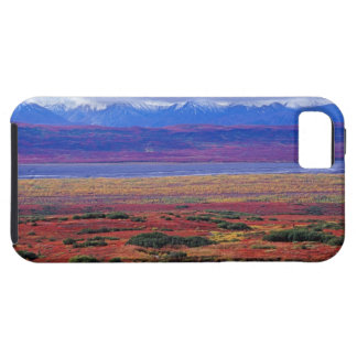 The tundra of Denali National Park in the late iPhone SE/5/5s Case