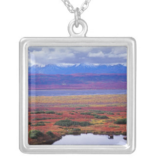 The tundra of Denali National Park in the late Square Pendant Necklace