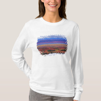 The tundra of Denali National Park in the late T-Shirt