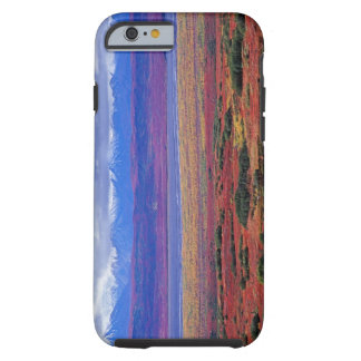 The tundra of Denali National Park in the late Tough iPhone 6 Case