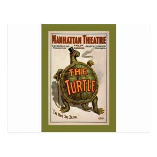 The Turtle ~  Early Broadway Poster 1898 Postcard