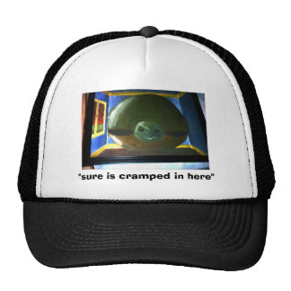the turtle in the room, trucker hat