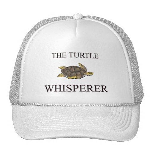 The Turtle Whisperer Mesh Hats