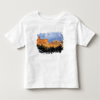 The Tuscan village of Sienna, Italy. Tshirt