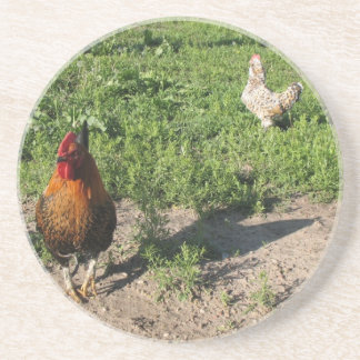 The Two Chickens Sandstone Coaster