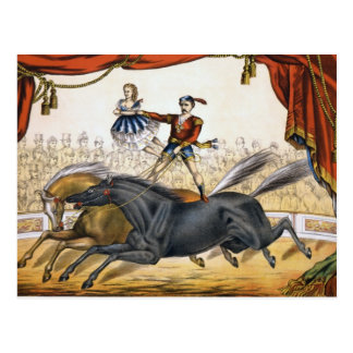 The two-horse act postcard