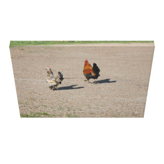 The Two Roosters Canvas Print