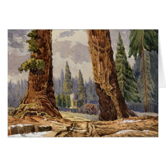 The Two Sentinels, at the Grove of Big Trees Greeting Card