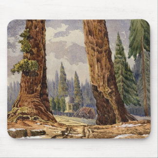 The Two Sentinels, at the Grove of Big Trees Mouse Pad