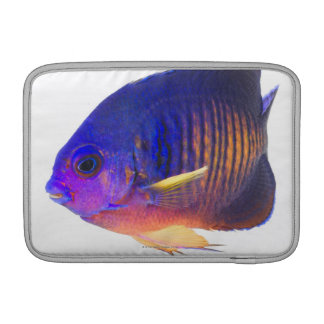 The two-spined angelfish MacBook sleeve