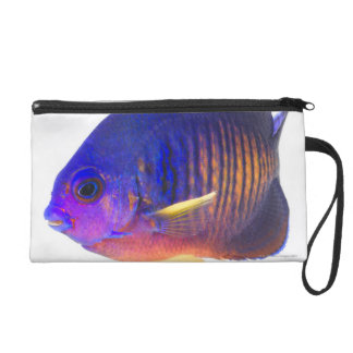 The two-spined angelfish wristlet purse