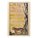 'The Tyger', plate 36 (Bentley 42) from 'Songs of Wood Canvases