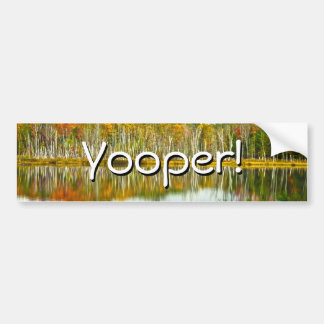 The U. P.: Autumn Birch Tree Reflections Bumper Sticker
