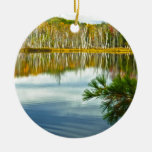 The U. P.: Autumn Birch Tree Reflections Christmas Ornaments