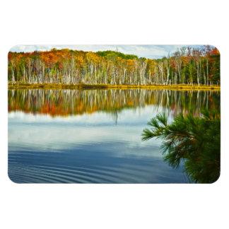 The U. P.: Autumn Birch Tree Reflections Rectangular Photo Magnet