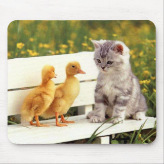 The Ugly Duckling Mousepad