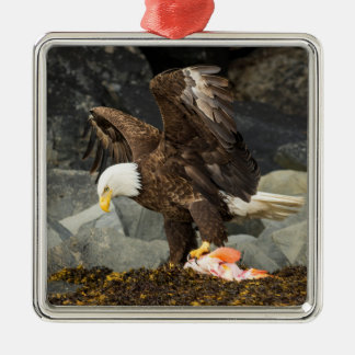 The Ultimate Bald Eagle Metal Ornament