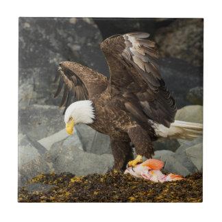 The Ultimate Bald Eagle Tile