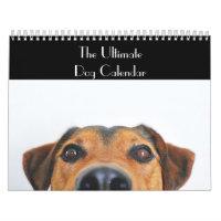 The Ultimate Dog Calendar