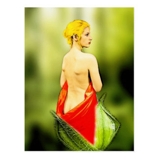 The Undressing of Beauty! Postcard