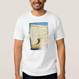 The United States Constitution Above the Earth Shirts
