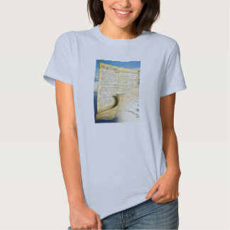The United States Constitution Above the Earth T Shirts