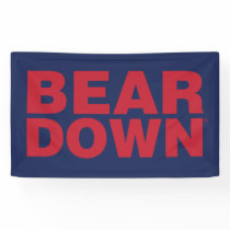 The University of Arizona | Bear Down Banner