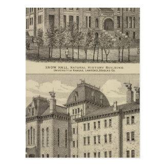 The University of Kansas Postcard