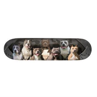 The Untouchables - Pitbull Champion Series Skateboard Deck
