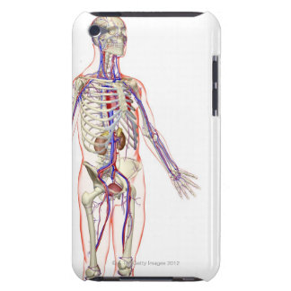 The Urinary System 2 Barely There iPod Cover