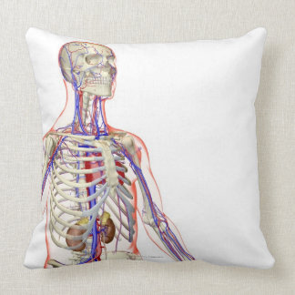 The Urinary System 2 Throw Pillow