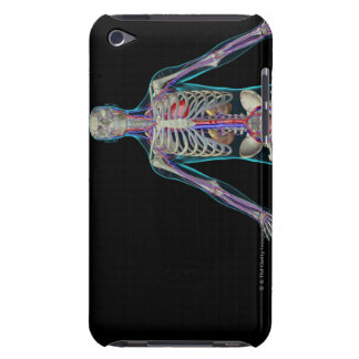 The Urinary System Barely There iPod Cover