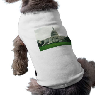 The US Capitol Building Tee