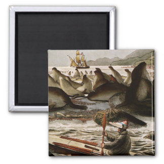 The US Dragon in an Expedition, George Catlin Fridge Magnet